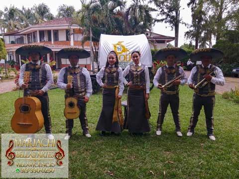mariachi bellas artes villavicencio